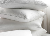 Pownall & Hampson Pillows